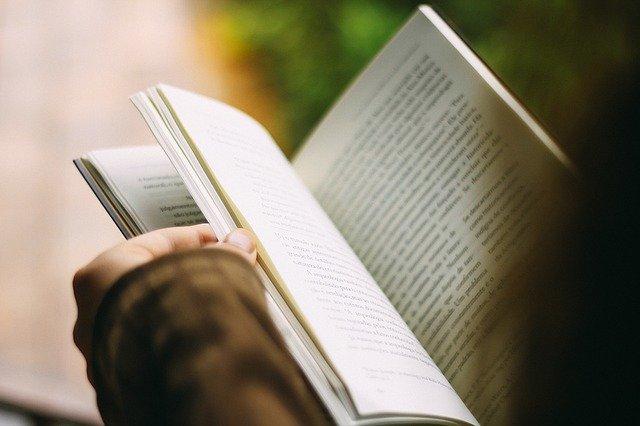 función de la novela