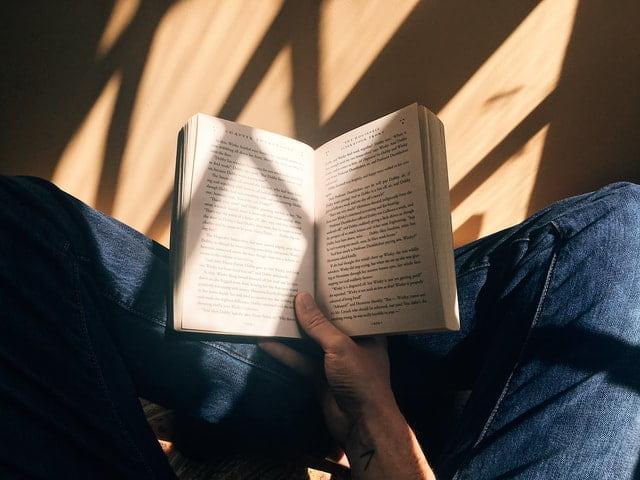 novela lírica