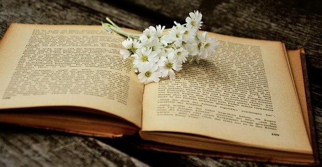Desarrollo literario del tremendismo