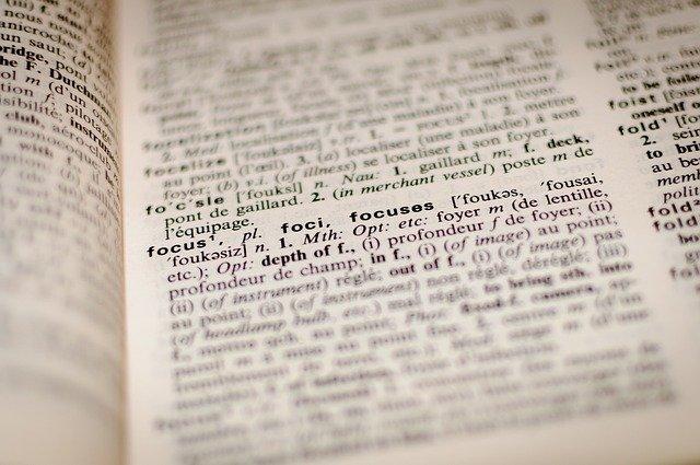 subgénero diccionario